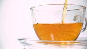 Versare il tè nero aromante dalla teiera in una tazza da tè trasparente in corrispondenza di chiusura a fondo bianco stock footage
