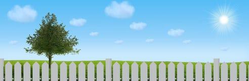 Verschönern Sie Baum auf dem Feld unter blauem Himmel landschaftlich Stockbilder
