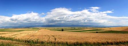 Verschönern Sie großes Panorama landschaftlich Lizenzfreie Stockbilder