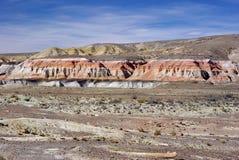 Verschönern Sie im Patagonia landschaftlich Stockfotos