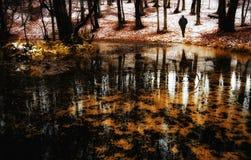 Verschönern Sie mit dem Mann landschaftlich, der nahe See im roten Wald geht Lizenzfreie Stockbilder