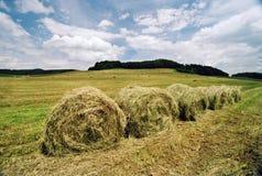 Verschönern Sie mit Landwirtschaftsfeld, -himmel und -wolken landschaftlich Lizenzfreie Stockbilder