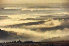 Verschönern Sie mit Nebel über den Hügeln und einem Vogel landschaftlich Stockfotografie