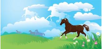 Verschönern Sie mit Pferden landschaftlich Lizenzfreies Stockfoto