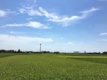 verschönern Sie sehr Himmel und Feld Stockbilder