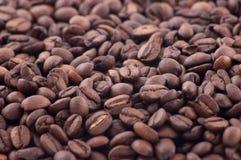 Verschüttete Kaffeebohnen Stockbilder