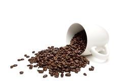 Verschüttete Kaffeebohnen getrennt auf Weiß Stockbild