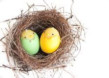 Verschachteln Sie mit zwei Eiern lizenzfreie stockbilder