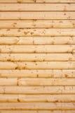 Einstieg des Weichholzes Lizenzfreies Stockfoto