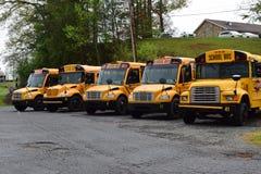 Verscheidene geparkeerde Schoolbussen Stock Foto