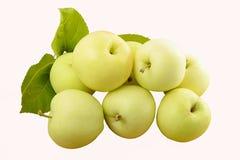 Verscheidene groene appelen met bladeren Royalty-vrije Stock Foto's
