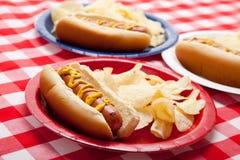 Verscheidene hotdogs op gekleurde platen Stock Afbeelding