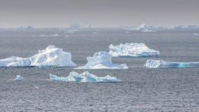 Verscheidene ijsbergen die in de baai van Antarctica worden verspreid royalty-vrije stock afbeelding