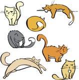 Verscheidene Katten Stock Fotografie