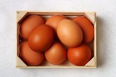 Verscheidene kippeneieren in houten doos Royalty-vrije Stock Afbeelding