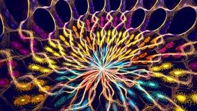 Verscheidene mooie geroteerde fractals stock footage