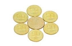 Verscheidene muntstukken van Oekraïense hryvnia op een lichte achtergrond Stock Afbeeldingen