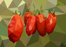 Verscheidene rijpe rode tomaten die op een tak in de serre hangen stock fotografie