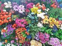 Verscheidene species van bloemen worden gemengd Royalty-vrije Stock Afbeeldingen