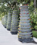 Verscheidene van bloembedden op grote hoogte Royalty-vrije Stock Foto's