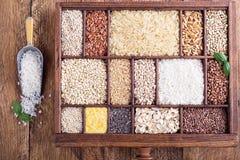 Verscheidenheid van gezonde korrels en zaden stock fotografie