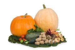 Verscheidenheid van groenten. Royalty-vrije Stock Foto