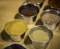 Verscheidenheid van kruiden stock foto