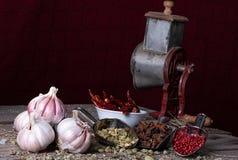 Verscheidenheid van kruiden en kruiden van exotische Indische kleuren, op de keukenlijst royalty-vrije stock fotografie