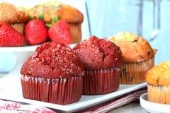 Verscheidenheid van muffins Royalty-vrije Stock Afbeeldingen