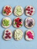 Verscheidenheid van sandwiches - de sandwiches met kaas, tomaten, ansjovissen, roosterden peper, frambozen, avocado, boonpastei,  royalty-vrije stock foto