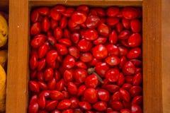Verscheidenheid van smaakstoffen en specerijen in de houten doos royalty-vrije stock afbeeldingen