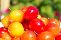 Verscheidenheid van verschillende rode vruchten: kers-pruimen Stock Fotografie