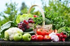 Verscheidenheid van verse organische groenten in de tuin Stock Afbeelding
