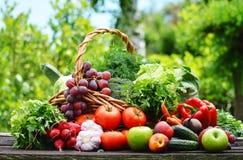Verscheidenheid van verse organische groenten in de tuin Stock Foto's