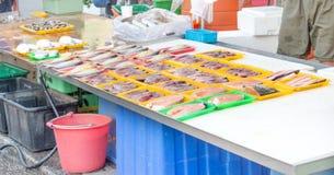 Verscheidenheid van vissen stock fotografie