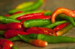 Verscheidenheidskleur van Spaanse pepers Stock Afbeelding