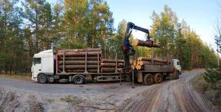 Verschepend hout Het laden van felled bomen in de houtkraan stock foto