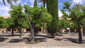 Verschieben des Innenhofes, Patio de Los Naranjos, der Moschee von Cordoba, Andalusien, Spanien stock footage