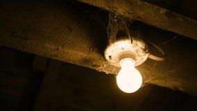 Verschieben zu einer Glühlampe bedeckt in den Spinnennetzen - Horrorkonzept - normale Version stock footage