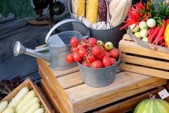 Verschieden vom Gemüse lizenzfreies stockbild