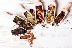 Verschieden vom Tee lizenzfreie stockfotos