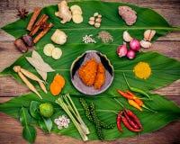 Verschieden vom thailändischen Lebensmittel, das Bestandteile und roten Pas Curry des Gewürzs kocht stockfotos