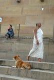 Verschiedenartigkeit in Indien lizenzfreies stockfoto