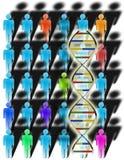 Verschiedenartigkeit und DNA Stockbild