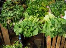 Verschiedene Art des grünen Gemüses verkaufte an traditionellem Markt Foto eingelassenes Indonesien Bogors stockbild