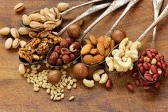 Verschiedene Arten der nuts Zeder, Acajoubaum, Haselnüsse, Walnüsse Stockfotos
