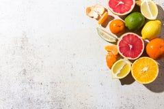 Verschiedene Arten der Zitrusfrucht auf weißem Hintergrund Stockbilder