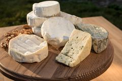 Verschiedene Arten des Käses auf einem hölzernen Hintergrund verschiedene Käse auf einer hölzernen Platte Stockbild
