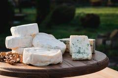 Verschiedene Arten des Käses auf einem hölzernen Hintergrund verschiedene Käse auf einer hölzernen Platte Stockfotos