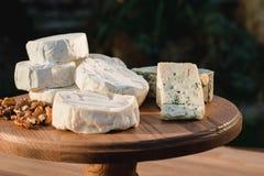 Verschiedene Arten des Käses auf einem hölzernen Hintergrund verschiedene Käse auf einer hölzernen Platte Lizenzfreie Stockfotografie